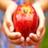 Almaty 蘋果