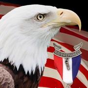 Patriot Eagle 1