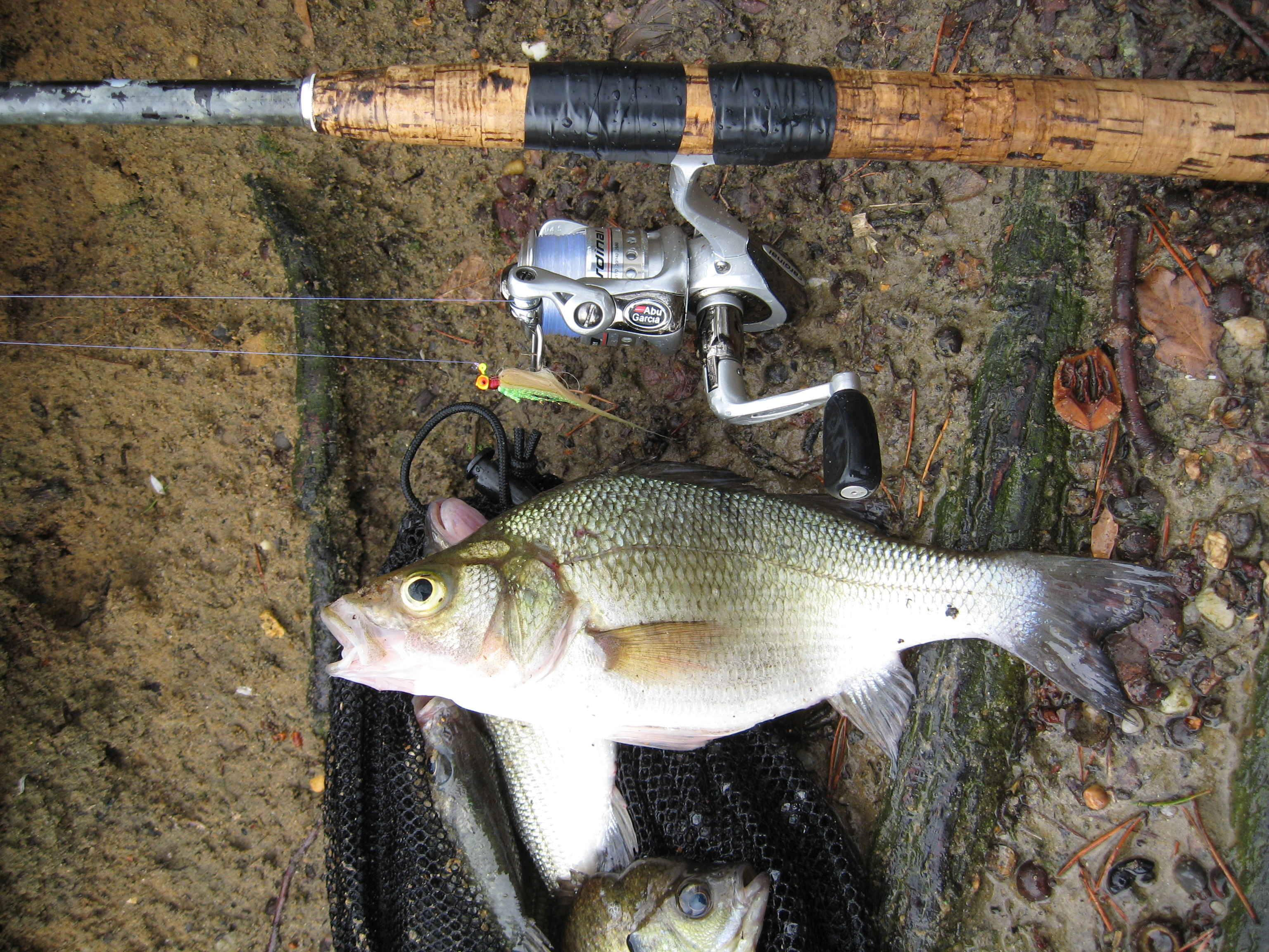Hairjig Options For Cold Water Panfish Bluegill Big