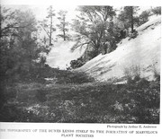 NGM 1919-05 Pic 5