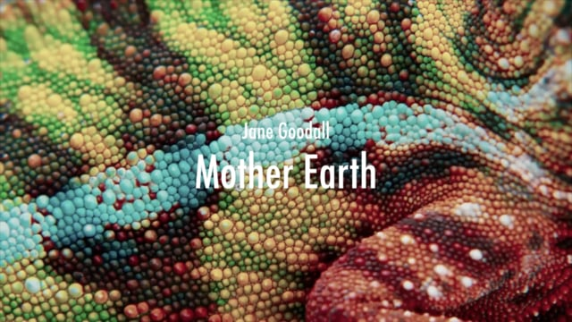 Jane Goodall - Mother Earth