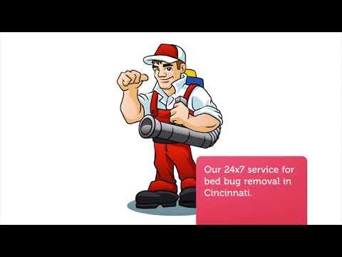 OCP Bed Bug Removal in Cincinnati, OH (513-214-0856)