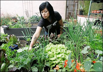 relax with food gardening