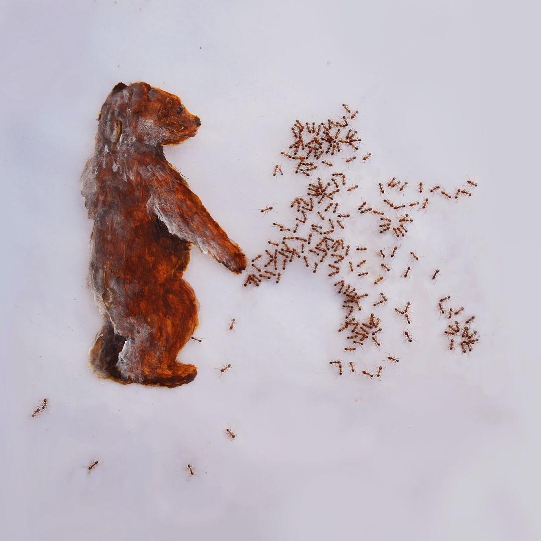 ჭიანჭველები, ხატვა, მხატვრობა, ბლოგი, ხელოვნება, Qwelly, ant, art, painting