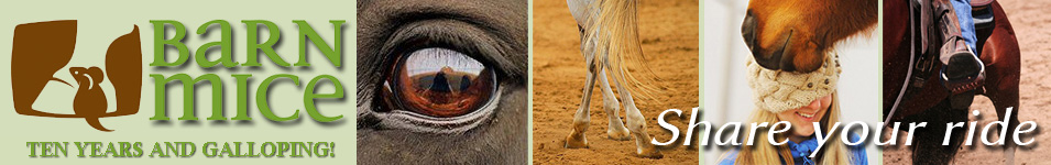 Barnmice Equestrian Social Community