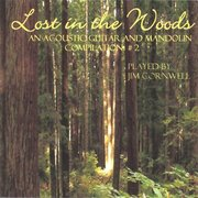 Lost In The Woods CD cover