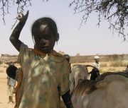 Is Sustainable Development Possible during Conflict?