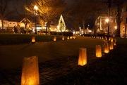 Luminaria in Roslindale
