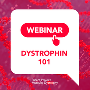 Dystrophin 101: Everything You Always Wanted to Know About the Duchenne Protein (And Were Not Afraid to Ask)