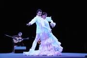 Juan Siddi Flamenco Theatre Company
