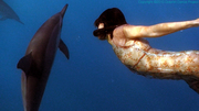 Together: Dancing with Spinner Dolphins