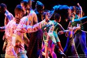 BodyStories: Teresa Fellion Dance & Treeline Dance Works present CODE OF INSTINCT