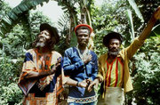 The Abyssinians, Native Elements, Revival Sound System