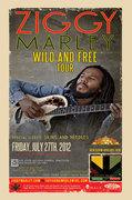 Ziggy Marley and Skins & Needles