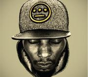 Del the Funky Homosapien with The Serendipity Project