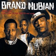 I luv the 90's Tour  Feat. Brand Nubian