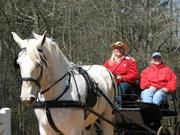 FUNDRS 3d Annual Recreational Drive/Ride & Tack Swap/Sale