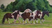 Beautiful Horses of Indiana Paintings Exhibit