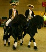 Equestria Festival at the National Stud in Tarbes