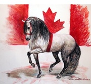 PAALH Canadian National Andalusian & Lusitano Horse Show & Fiesta