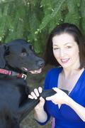 Beginning - Advanced Animal Communication