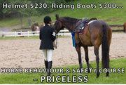 Horse Behaviour & Safety online course