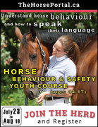 Horse Behaviour and Safety online course for youth