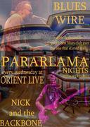 PARARLAMA NIGHTS