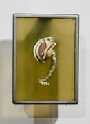 Larvum cauda
