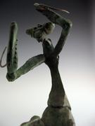 """Equus ferus mantis, """"Wild Horse Mantis"""""""