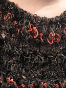 rubber band collar closeup