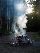 Backlit Smoke