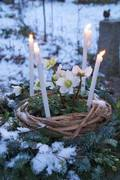 Imbolc, Candlemas, 1st February, Celebrate the real first day of Spring.