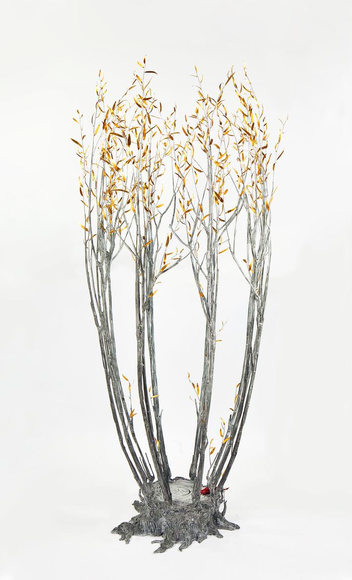 Field Study: Suckering Willow, 2014