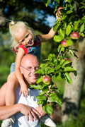 Create your own mini-urban orchard