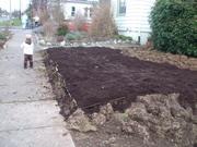 Soils and Soil Building