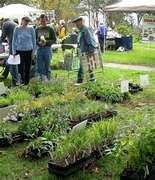Native Plant Sale- Saturday March 19