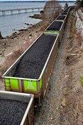 The Coal Hard Truth Forum