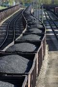 The Coal Hard Truth