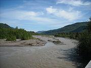 South Fork Nooksack River Cleanup