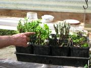 Hands on Plant Propagation Workshop