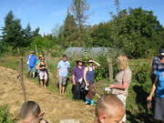 Practical Permaculture Introduction weekend