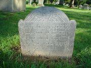 Ann Borodell DENISON