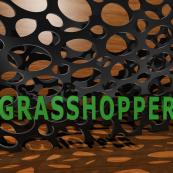 Grasshopper en 24 horas intensivas