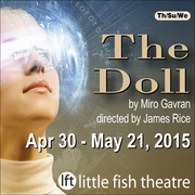 The Doll by Miro Gavran
