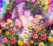 love magic colors-lissy005 - 1zSgl-10g - normal