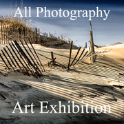 All Photography Online Art Exhibition Results Now Posted and Ready to View