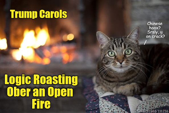 Trump Carols: Logic Roasting Ober an Open Fire [Logic Roasting On an Open Fire]; cat saying 'Chinese hoax? Srsly, u on crack?'