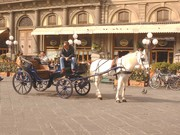 florence  Carriage