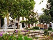 Local Plaza in Priego